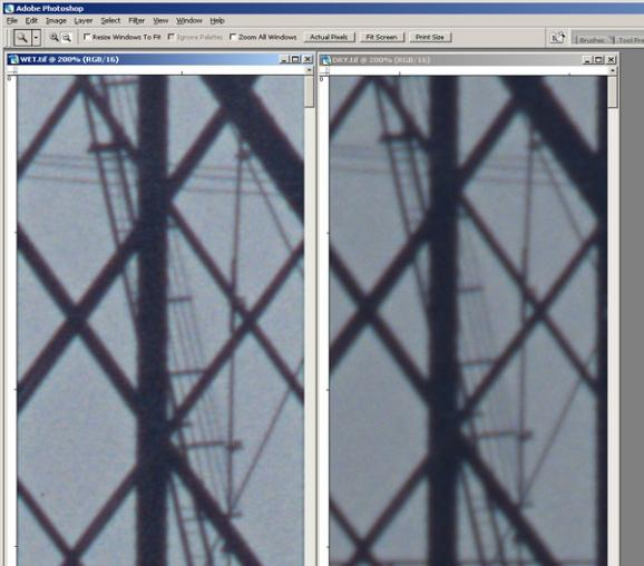 Nikon 9000 sample wet and dry scans compared